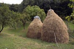 Haystacks. Two haystacks in the backyard royalty free stock photo