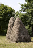 Haystacks. Two haystacks in courtyard with trees in the background stock photography