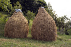 Haystacks. Two haystacks ready for winter royalty free stock images