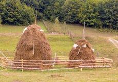 Haystacks, typical Romanian  rural scene Royalty Free Stock Image