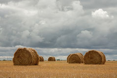 Haystacks under clouds Royalty Free Stock Images