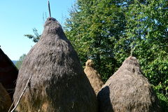 Haystacks in the village Rosia Montana, Transylvania Royalty Free Stock Image