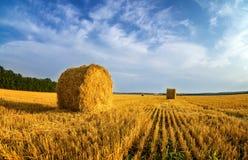 Haystacks w jesieni polu, wiejskim, Rosja, Ural Obraz Stock