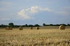 haystacks w polu Zdjęcia Stock