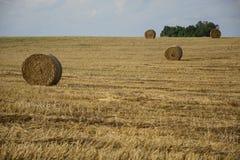haystacks w polu Fotografia Stock