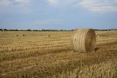 haystacks w polu Obraz Stock