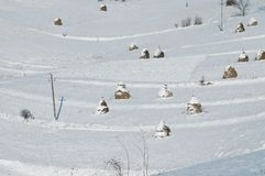Haystacks at winter Stock Photography