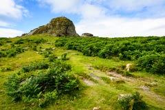 Haytor Rocks, Dartmoor Stock Photo
