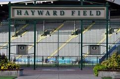 hayward поля Стоковое фото RF