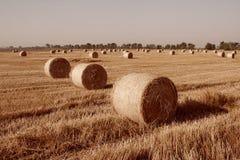 hayward fotografia stock
