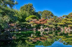 Hayward California Japanese Garden-vijver royalty-vrije stock foto's