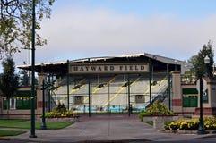Hayward Feld Lizenzfreie Stockfotos