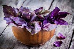 Haz de la albahaca púrpura en el cuenco Fotos de archivo libres de regalías