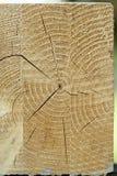 Haz pegado de madera Imagenes de archivo