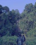 Hazachora-Wasserfall Lizenzfreies Stockfoto