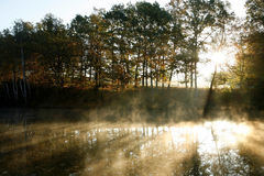 Haze above a pond Royalty Free Stock Image