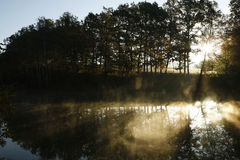 Haze above a pond, side view Royalty Free Stock Images