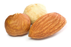 Hazel and almond nuts. Closeup of hazel and almond nuts kernels isolated on white background Stock Photography