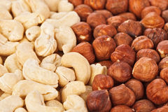 Hazel and cashew nuts Stock Photography