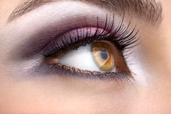 Hazel eye Royalty Free Stock Photos