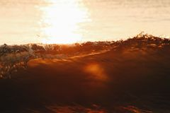 Hazel golven in de ochtend Stock Afbeelding