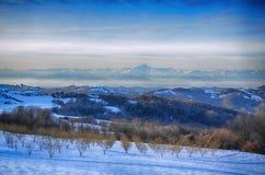Hazel Grove unter dem Schnee Stockfotos