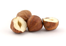 Hazel nut Royalty Free Stock Photography