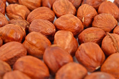 Hazel nut background Royalty Free Stock Photography