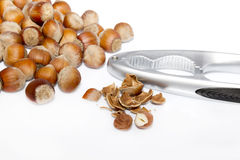 Hazel nut  and cracke Royalty Free Stock Image