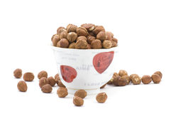 Hazel nut in cup Stock Photo
