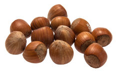 Hazel nut Stock Photos