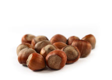 Hazel nuts Stock Image