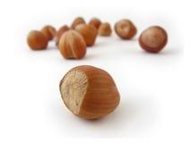 Hazel Nuts. Isolated on white Stock Photos