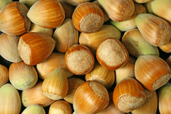 Hazel nuts. Close up view  background Royalty Free Stock Photography
