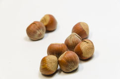 Hazel Nuts Images stock