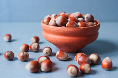 Hazel nuts in ceramic bowl. A pile of dried raw whole hazel nuts in ceramic bowl on blue table royalty free stock photography