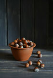 Hazel nuts in a clay bowl Royalty Free Stock Photos