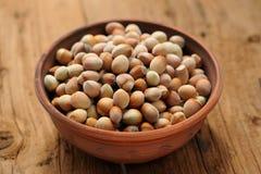 Hazel nuts in clay bowl Royalty Free Stock Photo