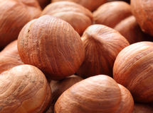 Hazel nuts Stock Photo