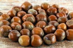 Hazel nuts. A close up of lots of whole hazel nut stock photos