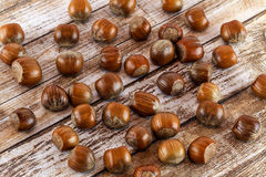 Hazel nuts. A close up of lots of whole hazel nut royalty free stock photography