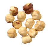 Hazel nuts collection Stock Photos