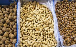 Hazel nuts and peanuts Royalty Free Stock Images