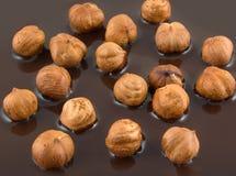 Hazelnoot en chocolade Stock Fotografie