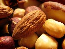 Hazelnoten, amandelen en Braziliaanse noten Stock Foto