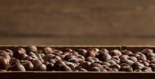 Hazelnoten in houten doos Royalty-vrije Stock Afbeeldingen