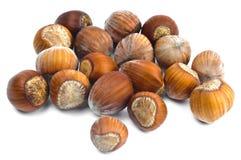 Hazelnoten in shell Stock Foto's