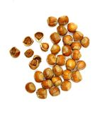 Hazelnut. Closeup of nuts in shells on white background Stock Photo