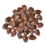 Hazelnut. S isolated on white background royalty free stock images