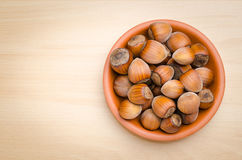 Free Hazelnut Stock Photography - 43648592